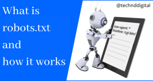 How to Add Robots.txt File in Your Website